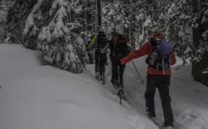 A ski dans les forêts des Tatras