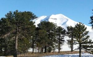 Volcans du Sud Chili à ski